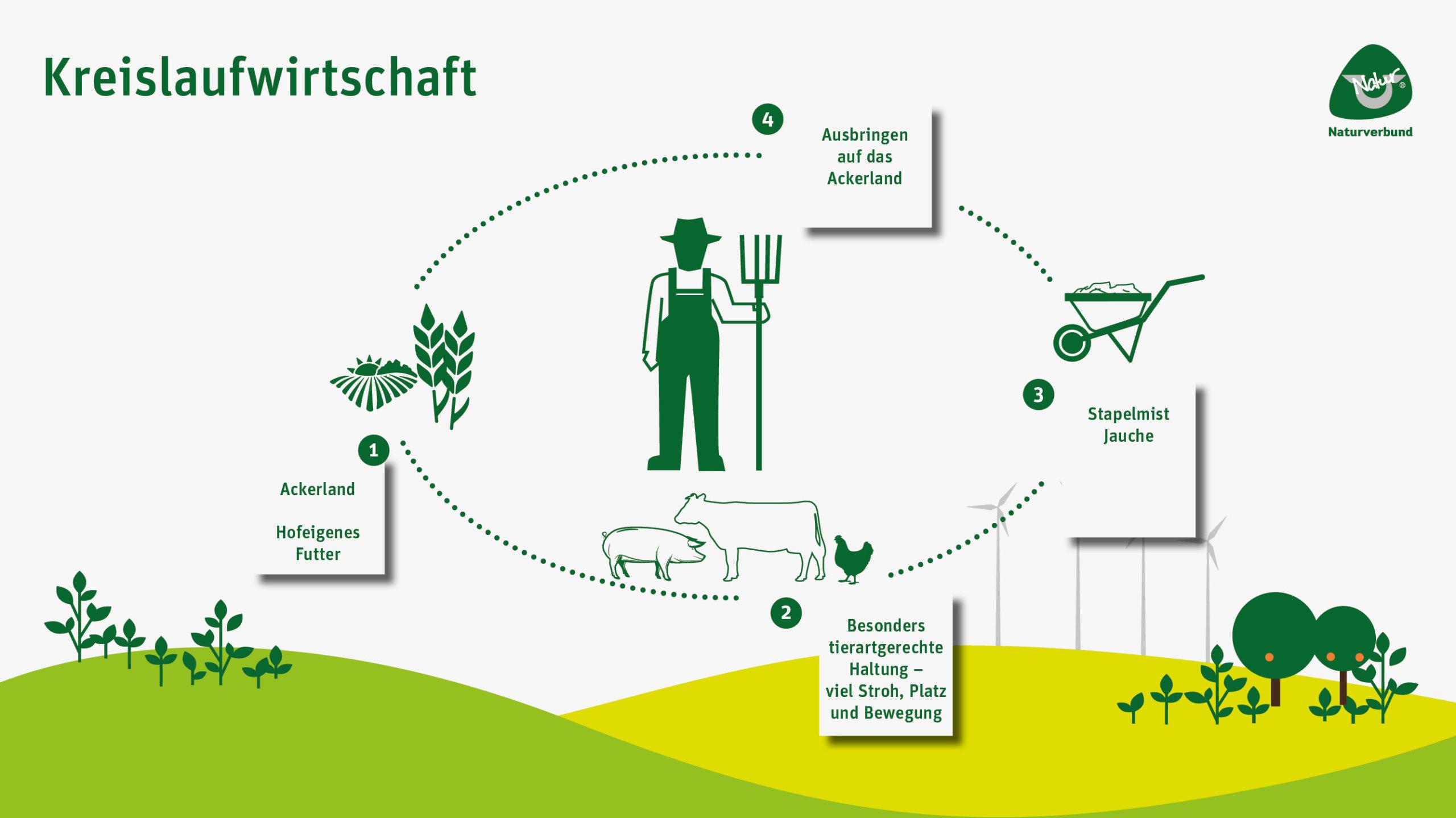 Infografik Naturverbund Kreislaufwirtschaft